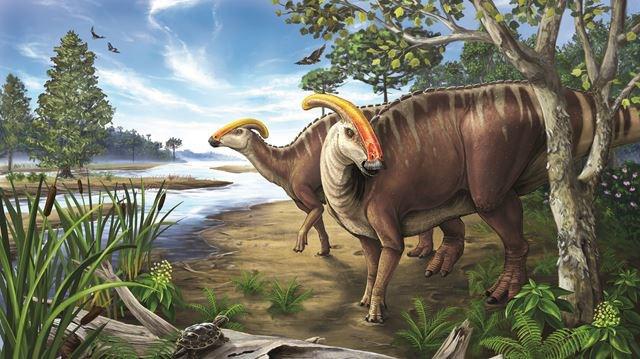 Phát hiện căn bệnh hiếm gặp ở trẻ em ngày nay được các nhà khoa học tìm thấy trong hóa thạch của… khủng long hung bạo thời tiền sử - Ảnh 1.