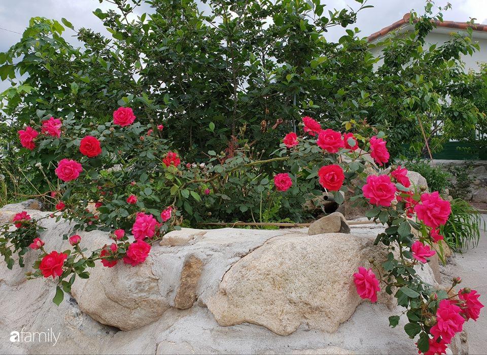 Tình yêu cổ tích của người chồng chăm vợ bị liệt 30 năm trong ngôi nhà vườn bình yên khiến cư dân mạng xúc động - Ảnh 5.