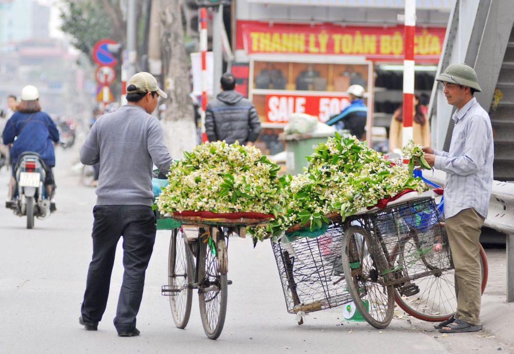 Đầu mùa gánh hoa bưởi xuống phố, giá hơn 300.000 đồng/kg vẫn đắt khách - Ảnh 2.