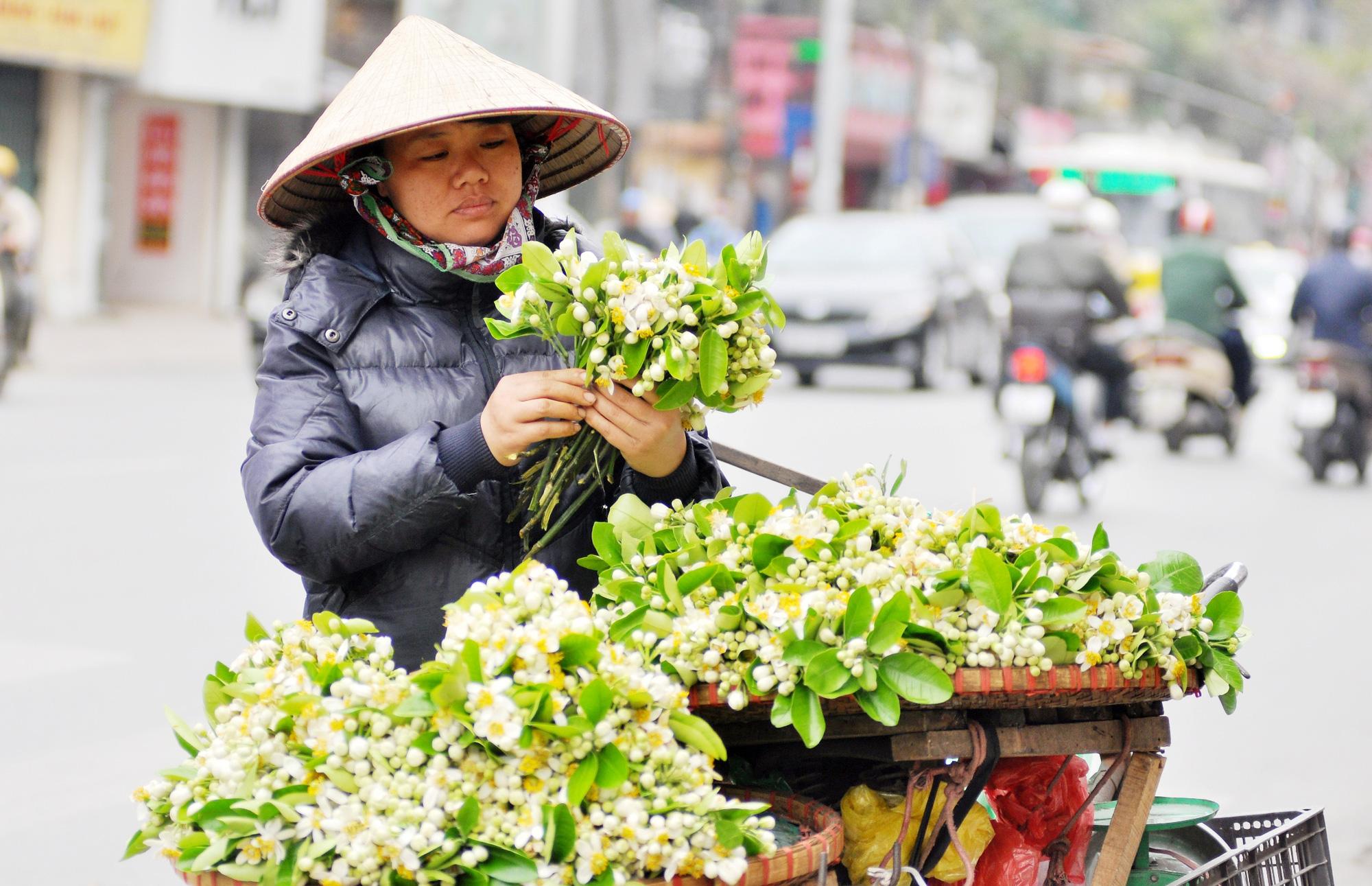 Đầu mùa gánh hoa bưởi xuống phố, giá hơn 300.000 đồng/kg vẫn đắt khách - Ảnh 6.
