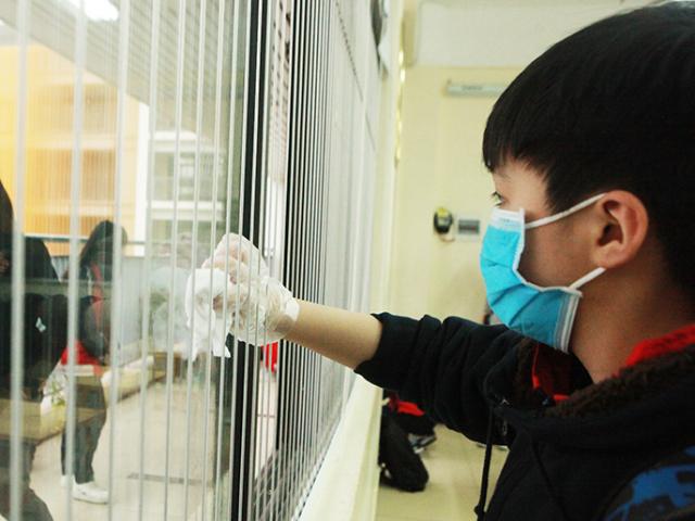 Quảng Ninh: 6 du học sinh từ Vũ Hán-Trung Quốc về nghỉ Tết Nguyên Đán đều có sức khỏe bình thường - Ảnh 1.