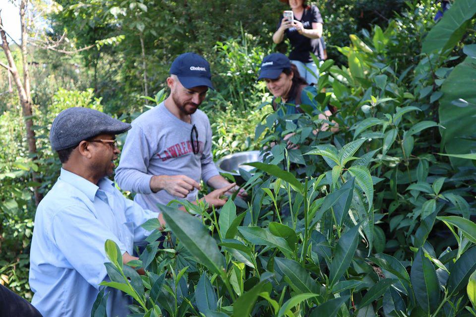 Cuộc sống bình yên, hạnh phúc của gia đình yêu thích trồng trọt tự cung tự cấp trên núi cao - Ảnh 16.