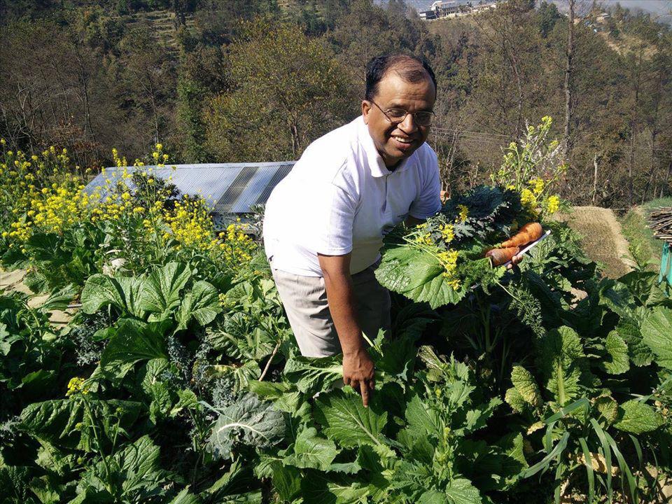 Cuộc sống bình yên, hạnh phúc của gia đình yêu thích trồng trọt tự cung tự cấp trên núi cao - Ảnh 2.