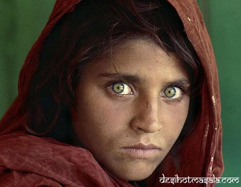 Đôi mắt của cô gái người Afghanistan Sharbat Gula đã tốn không biết bao  giấy mực của cánh báo chí. Cô gái mồ côi này lọt vào ống kính máy ảnh của  ...