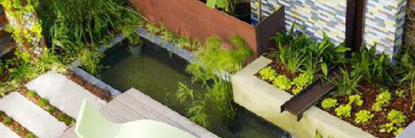 Bài trí cây xanh trong nhà một cách khoa học