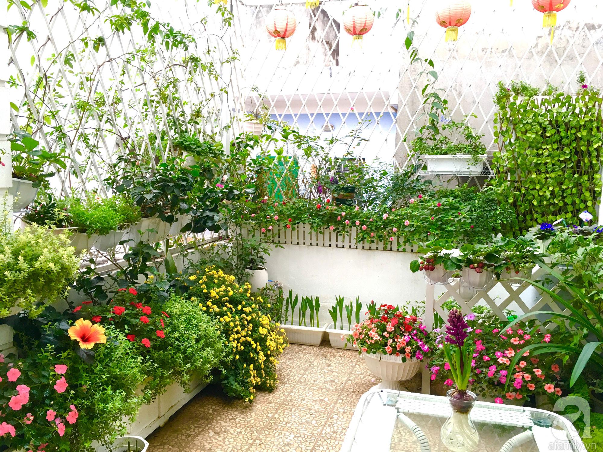 Với diện tích 15m², khu vườn của chị Linh Chi (phố Kim Mã, Hà Nội) khiến ai ngắm nhìn cũng phải ngợi khen bởi sự nổi bật, phong phú của hoa và ...