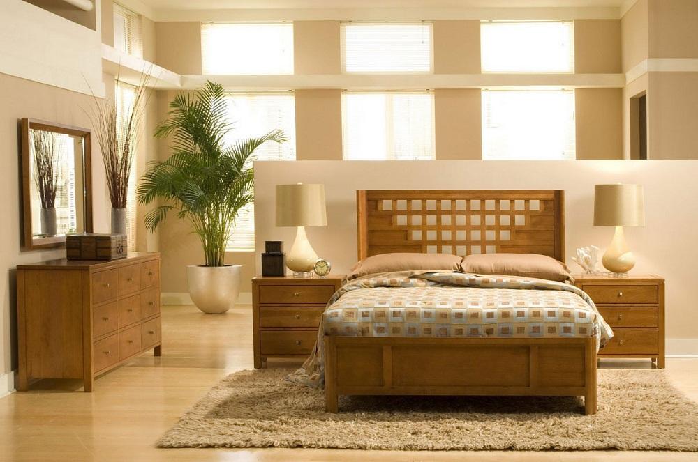Ngon giấc hơn với 5 loại cây cảnh tốt cho không gian phòng ngủ