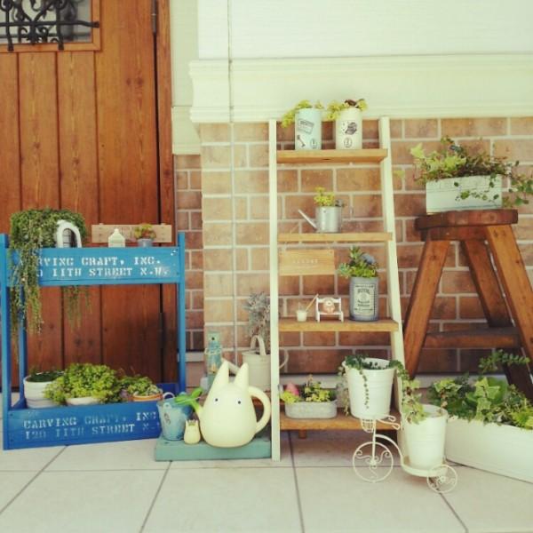 Chiếc thang gỗ kiêm giá kê chậu cây mang lại không gian xanh cho gia đình bạn