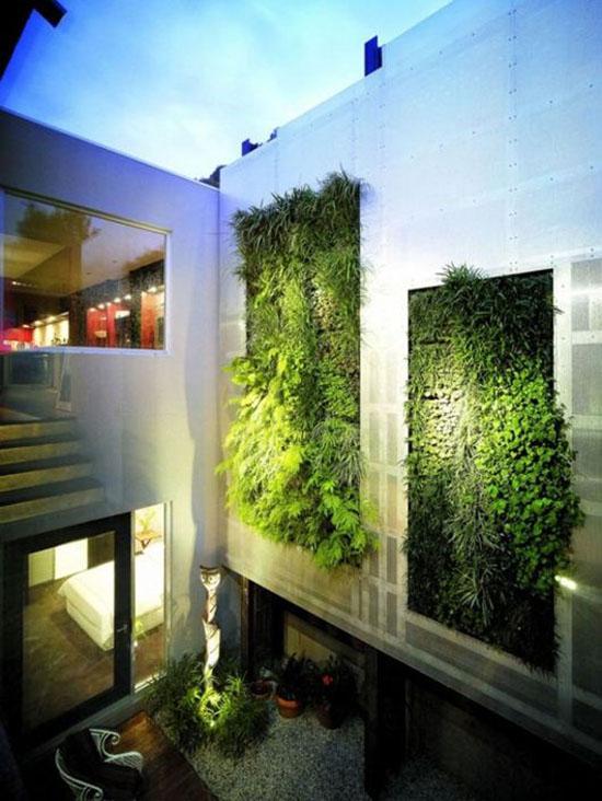 """Mang thiên nhiên vào nhà phố với """"khu vườn thẳng đứng"""" 1"""