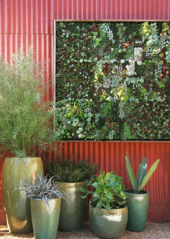 """Mang thiên nhiên vào nhà phố với """"khu vườn thẳng đứng"""" 9"""