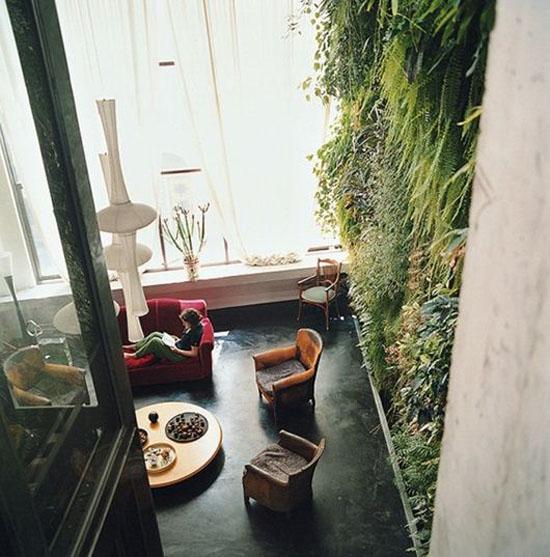 """Mang thiên nhiên vào nhà phố với """"khu vườn thẳng đứng"""" 3"""