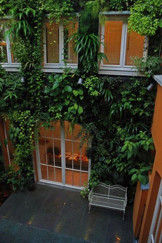 """Mang thiên nhiên vào nhà phố với """"khu vườn thẳng đứng"""" 4"""