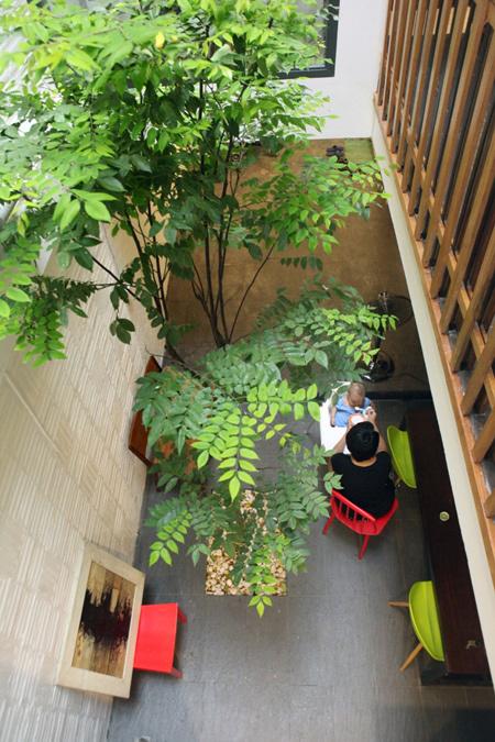 Tạo không gian sống sinh thái cho nhà phố với giếng trời 8