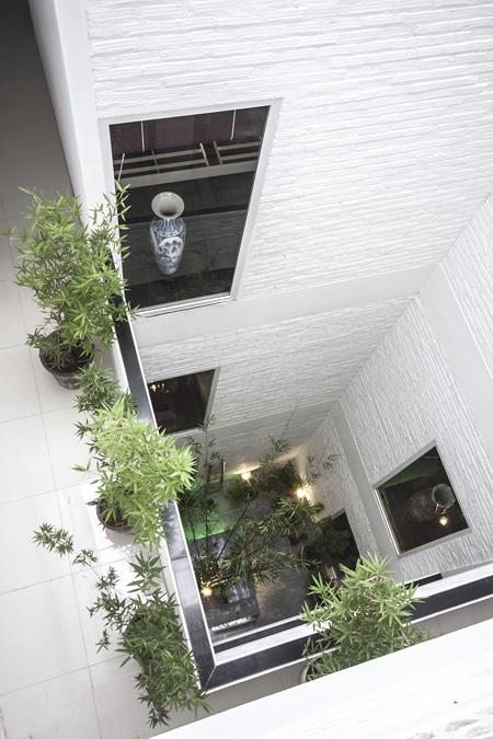 Tạo không gian sống sinh thái cho nhà phố với giếng trời 1