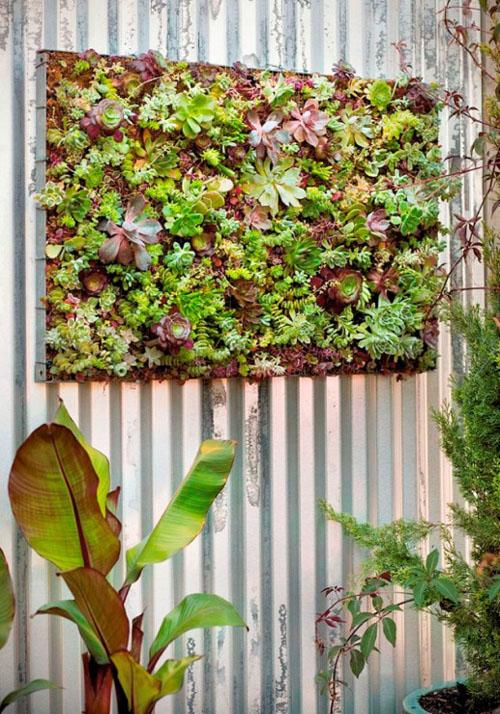 Ý tưởng làm vườn treo cực đơn giản 10