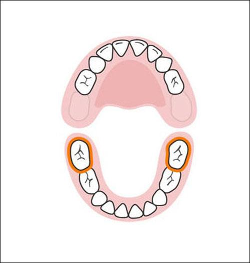Thứ tự mọc răng sữa của bé mẹ cần biết 9