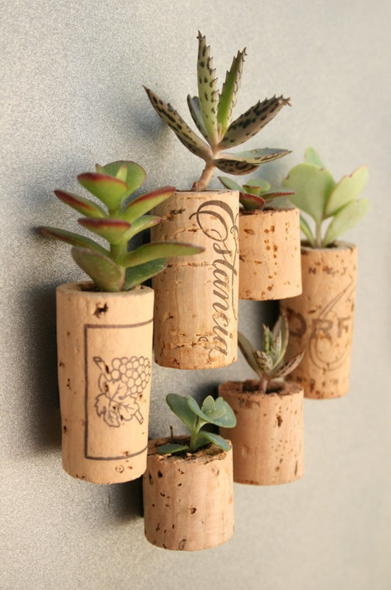4 cách tạo khu vườn mini cho căn nhà của bạn 1