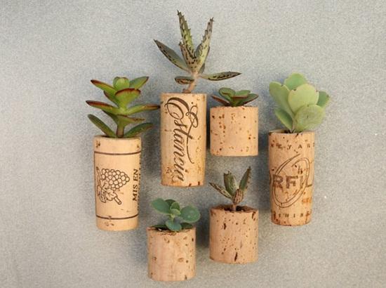 4 cách tạo khu vườn mini cho căn nhà của bạn 2