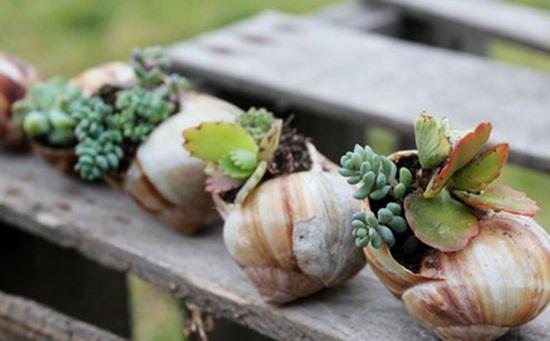 4 cách tạo khu vườn mini cho căn nhà của bạn 7