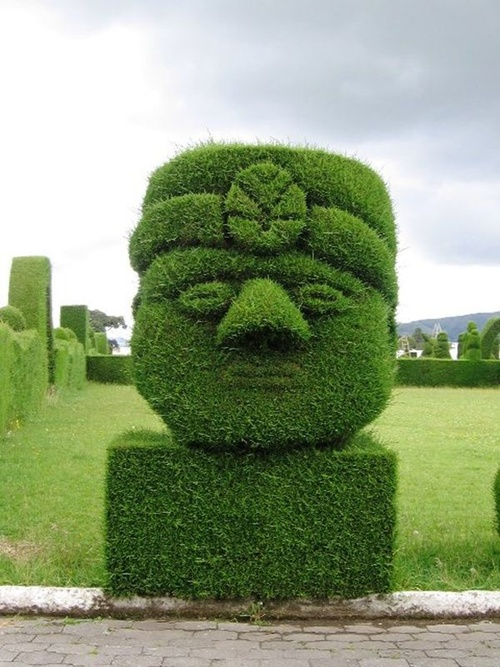Gợi ý trang trí vườn xinh bằng cây cảnh nghệ thuật 10