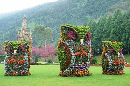 Gợi ý trang trí vườn xinh bằng cây cảnh nghệ thuật 16