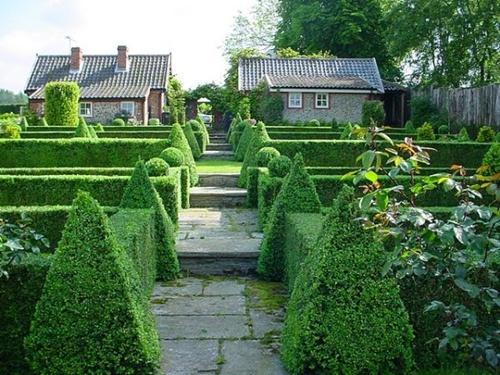 Gợi ý trang trí vườn xinh bằng cây cảnh nghệ thuật 2