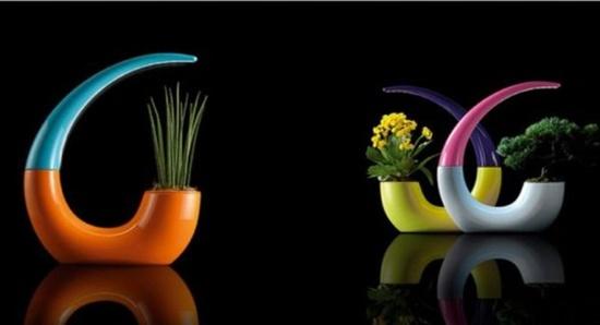 3 mẫu chậu cây cảnh giúp nhà bạn ấn tượng hơn  13