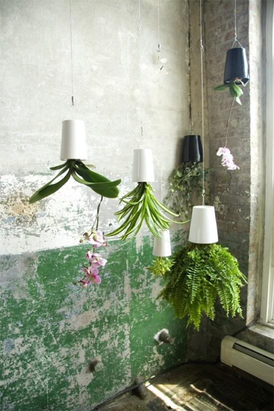 3 mẫu chậu cây cảnh giúp nhà bạn ấn tượng hơn  9