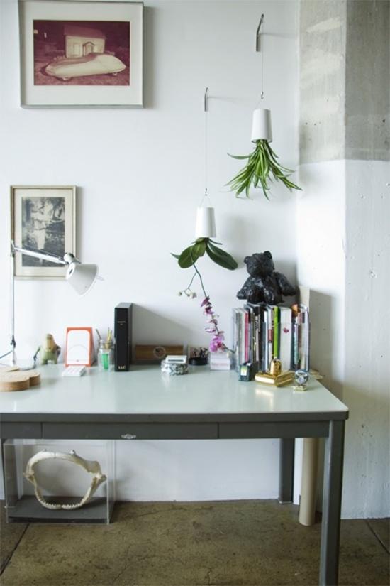 3 mẫu chậu cây cảnh giúp nhà bạn ấn tượng hơn  7