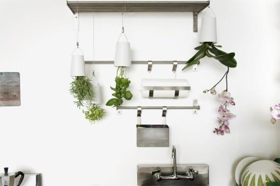 3 mẫu chậu cây cảnh giúp nhà bạn ấn tượng hơn  5