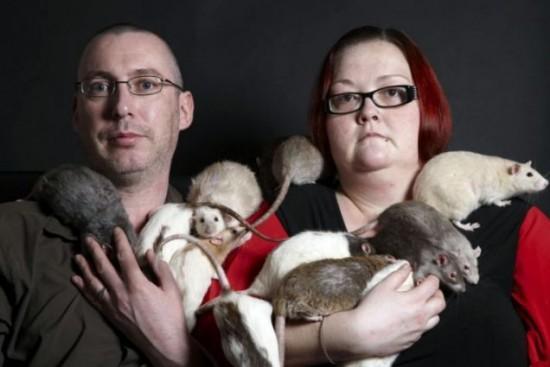 Những người yêu chuột một cách kỳ quặc 1