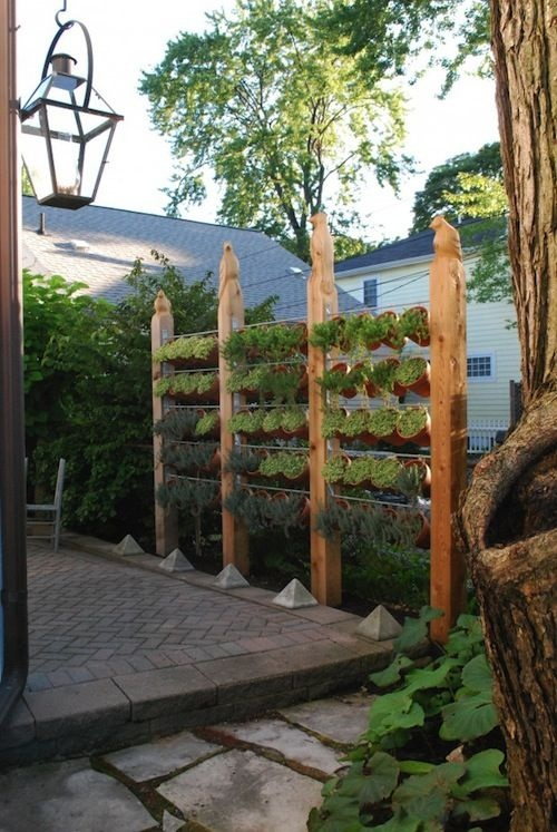 4 cách hay để sân vườn vừa mát vừa riêng tư 3