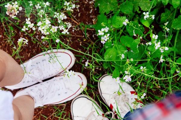 Chùm ảnh: Ngắm mùa hoa ban, hoa cải trắng đẹp mê mẩn ở Đà Lạt 5