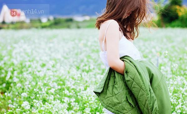 Chùm ảnh: Ngắm mùa hoa ban, hoa cải trắng đẹp mê mẩn ở Đà Lạt 6