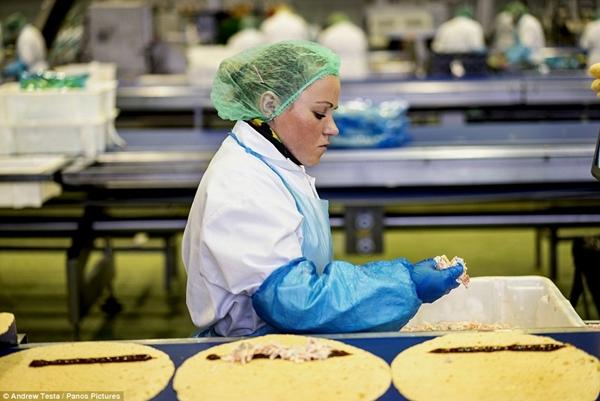 Cận cảnh nhà máy sản xuất sandwich lớn nhất nước Anh_13