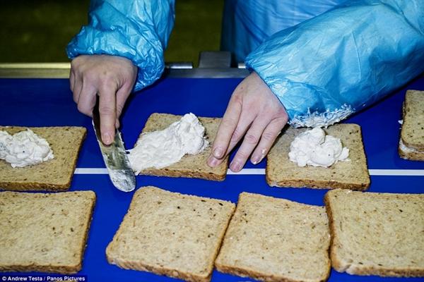 Cận cảnh nhà máy sản xuất sandwich lớn nhất nước Anh_4