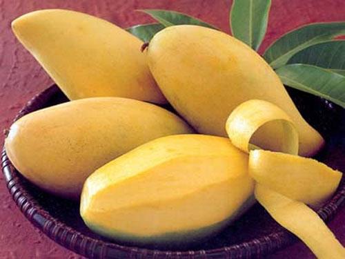10 loại quả có công dụng phòng chữa bệnh rất hữu ích 4