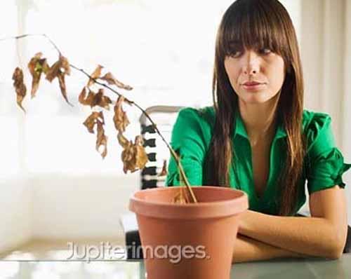 Nguyên nhân và biểu hiện thiếu hụt estrogen ở phụ nữ trẻ 1