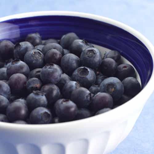 5 thực phẩm hàng đầu tốt cho cơ thể  3