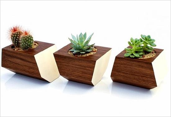 3 mẫu chậu cây cảnh giúp nhà bạn ấn tượng hơn  3