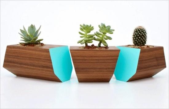 3 mẫu chậu cây cảnh giúp nhà bạn ấn tượng hơn  4