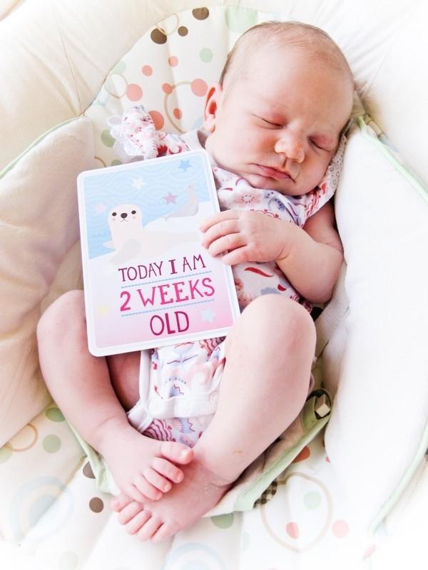 Con gái lớn lên qua từng tuần dưới ống kính của mẹ 2