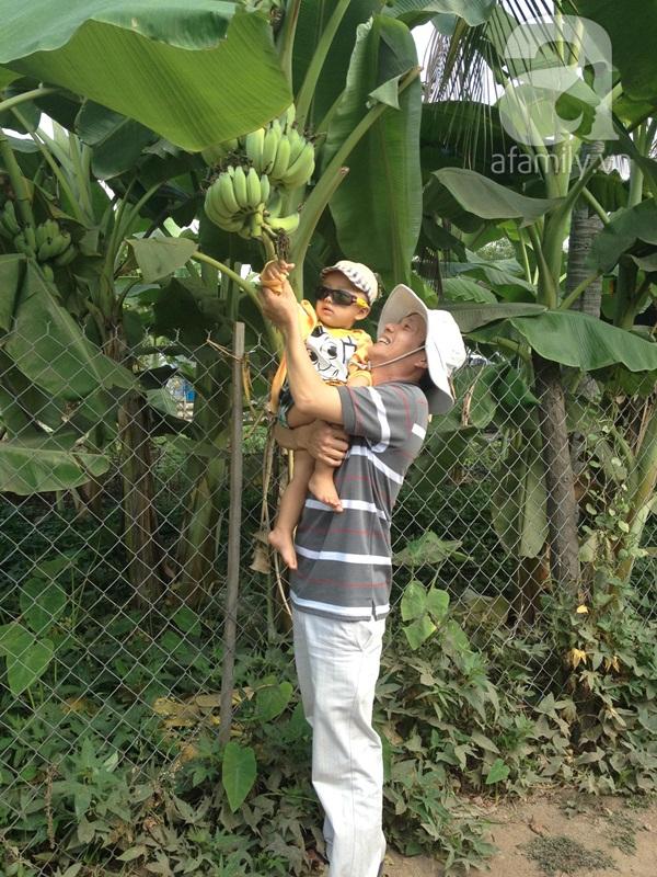 Tình yêu của bố 2