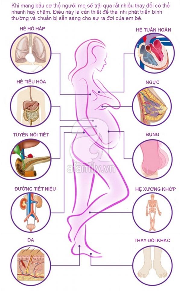 Thay đổi của cơ thể khi mang thai