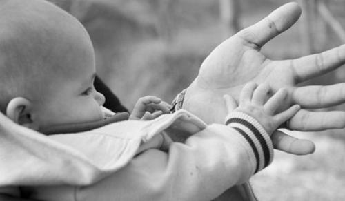 Bàn tay của bố 2