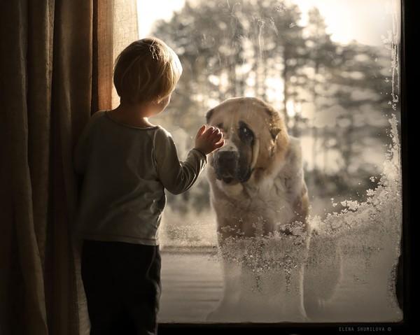 Bộ ảnh đẹp đến ngỡ ngàng của cậu bé bên các loài động vật 9