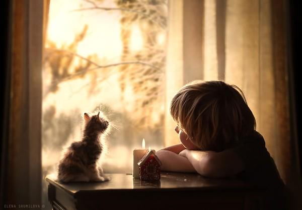 Bộ ảnh đẹp đến ngỡ ngàng của cậu bé bên các loài động vật 15