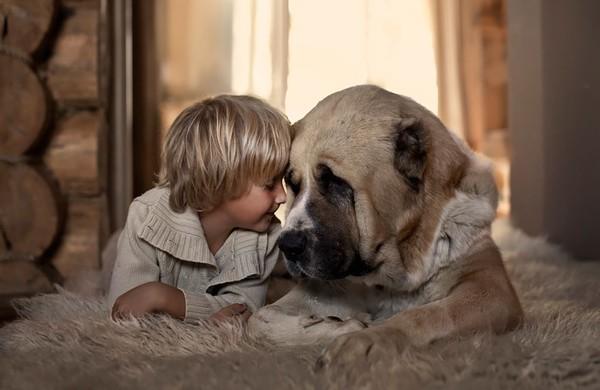 Bộ ảnh đẹp đến ngỡ ngàng của cậu bé bên các loài động vật 17