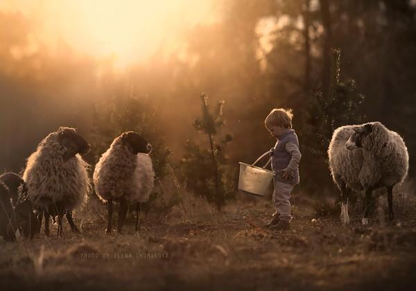 Bộ ảnh đẹp đến ngỡ ngàng của cậu bé bên các loài động vật 21