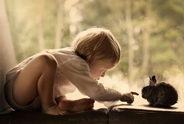 Bộ ảnh đẹp đến ngỡ ngàng của cậu bé bên các loài động vật 22